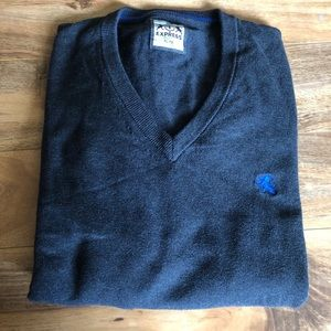Express Men's Cotton Charcoal V-Neck Sweater